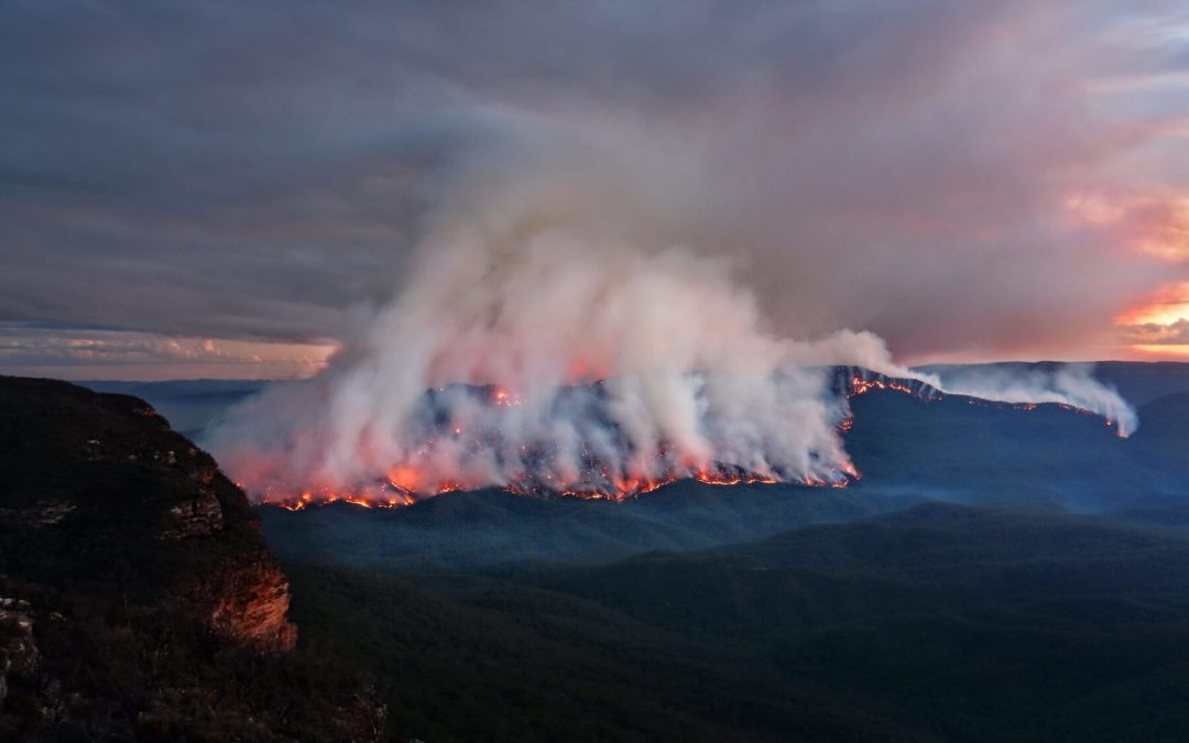 Australia Bushfires –– What You Need to Know